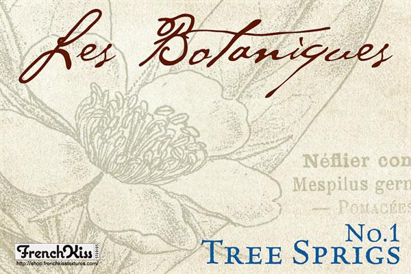 Tree Sprigs No.1