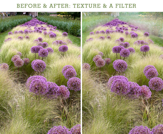 Before and After: Texture and a filter