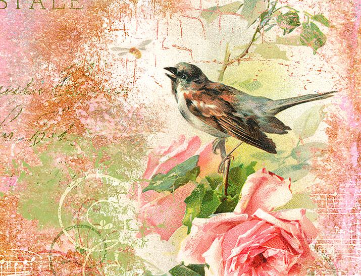 Bird collage detail