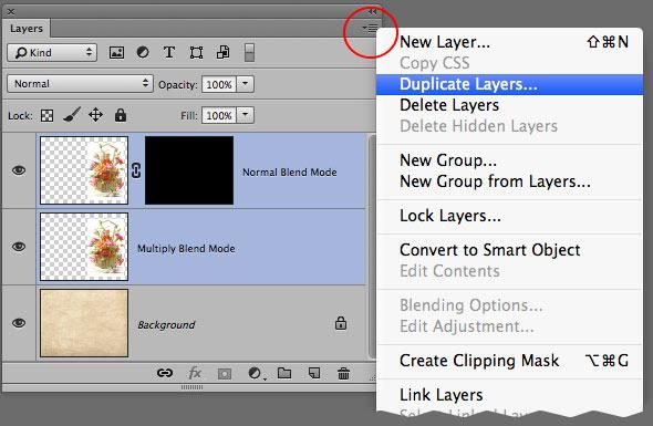 Duplicate Layers