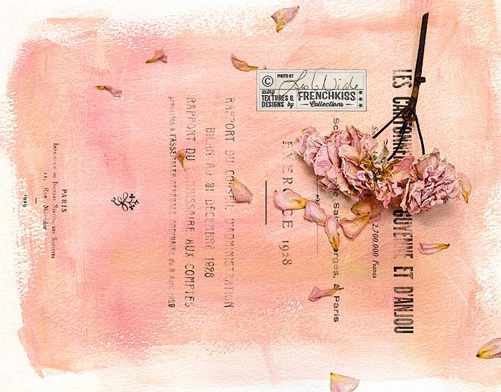 Leslie Nicole Vintage Rose textured