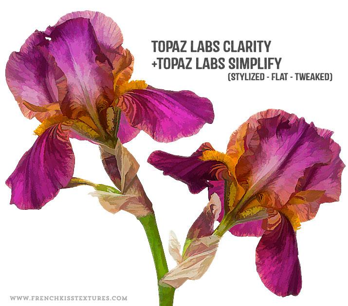 Topaz Labs Simplicity