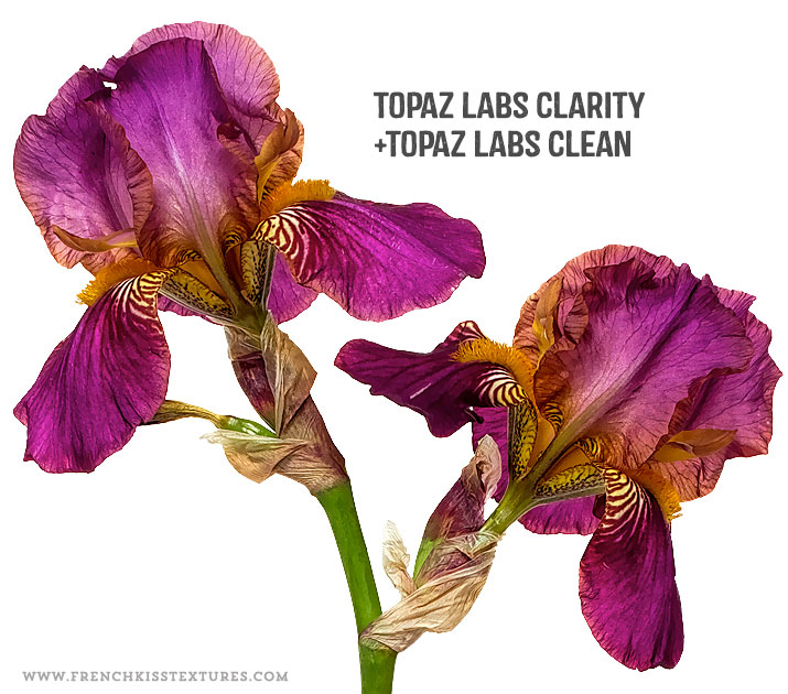 Topaz Labs Clarity and Clean filters