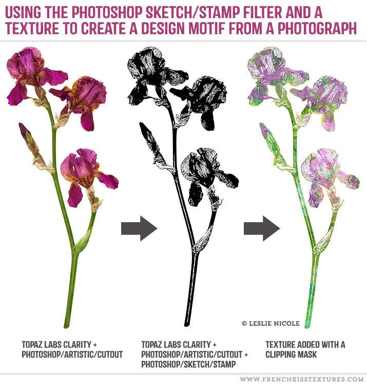 iris photograph design motif.
